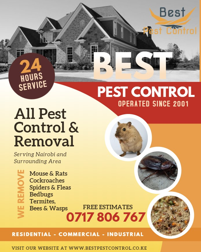 Fleas Control Mlolongo Bepeco Kenya Best Pest Control Services In Nairobi Best Fumigation Services In Nairobi Kenya Pest Control And Fumigation Top Nairobi Fumigation Service Commercial